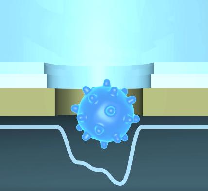 唾液で新型コロナウイルスを5分で迅速検査