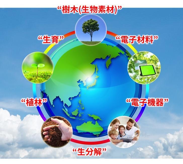 創発的研究支援事業:生物素材を用いた持続性エレクトロニクスの創成(古賀 大尚 准教授)