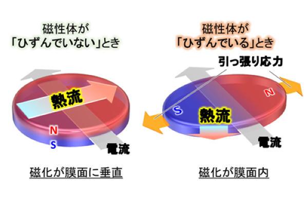 基板を曲げたり引っ張ったりするだけで 素子内の熱流方向を変えることに成功