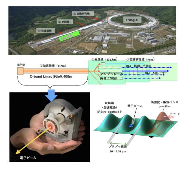 超高強度レーザーで作る電子ビームで 巨大な自由電子レーザーや放射光装置の卓上化実現を目指す