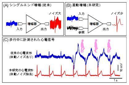 世界最薄・ 最軽量のノイズ低減機能付き生体計測回路を実現歩行中もノイズの少ない心電計測が可能に