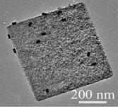 金ナノロッド/二酸化チタンメソ結晶の可視・近赤外光触媒作用による高効率水素発生