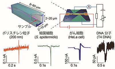 世界最高感度の電気計測システムを開発