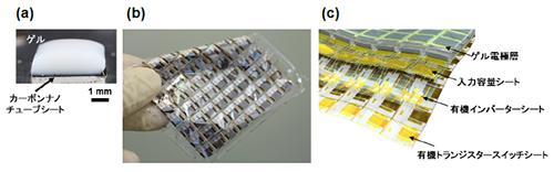 生体適合性ゲル電極を持つ柔軟な有機増幅回路シートの開発に成功 ~体内に埋め込み微弱な生活活動電位の計測が実現~