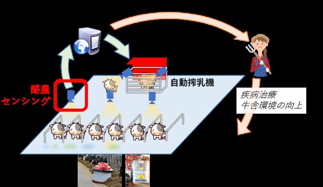映像解析と人工知能で酪農を変える! -乳牛の歩行映像から重大疾病の予兆を発見-