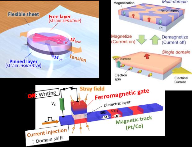 様々な手段を用いた磁性の制御