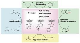 イリジウム触媒を用いる環境調和型酸化反応