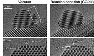 金ナノ粒子触媒の真空中とCO酸化反応環境下における環境制御型透過電子顕微鏡観察