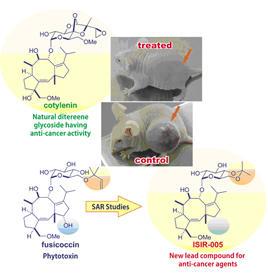 ジテルペン配糖体をリードとする新規抗がん剤の開発