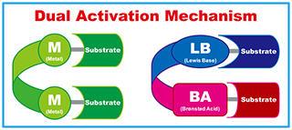 二重活性化機構の概念図